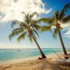 JetBlue just made sun, fun and rum in Barbados easier to enjoy!